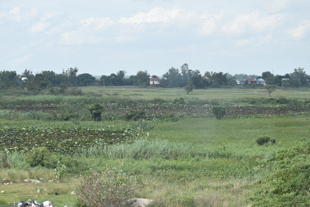 The view over the fields of Neak Loeung.
