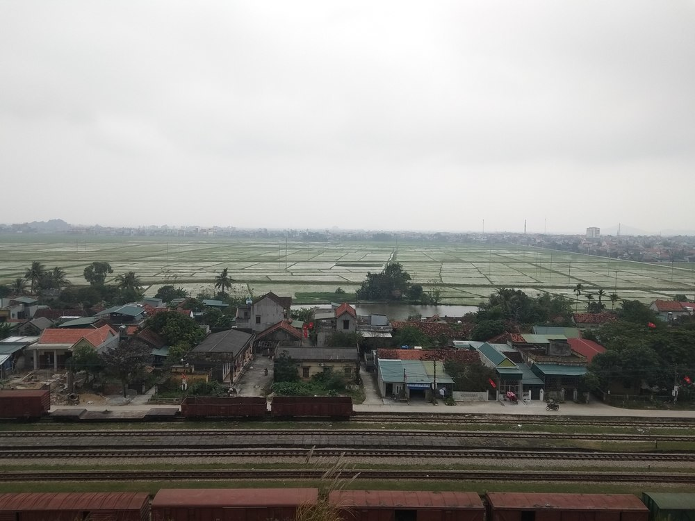 Rice fields in Cau Giat are magnificent